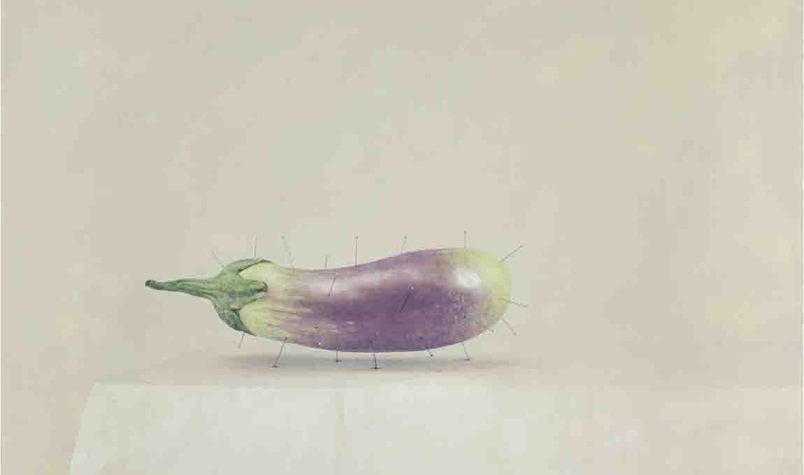 slider-zakii-eggplant-pins