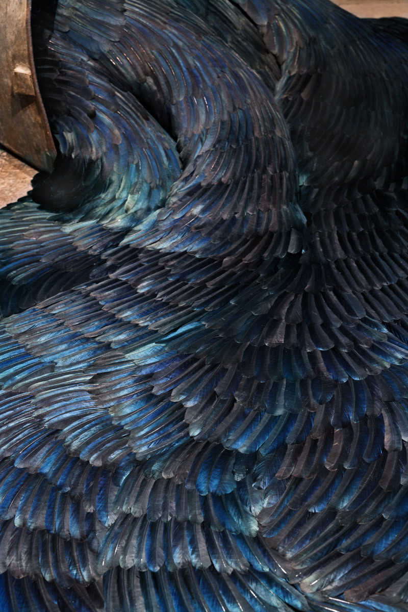 KM006_Secrete-close-up_Kate-MccGwire_Mixed-media-with-magpie-feathers_50-x-110-x-160-cm_2014_Photo-by-A-Brattell_low-res1